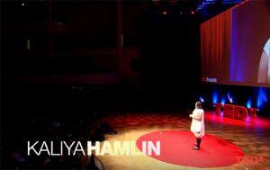 Ted X Brussels Kaliya Hamlin talk